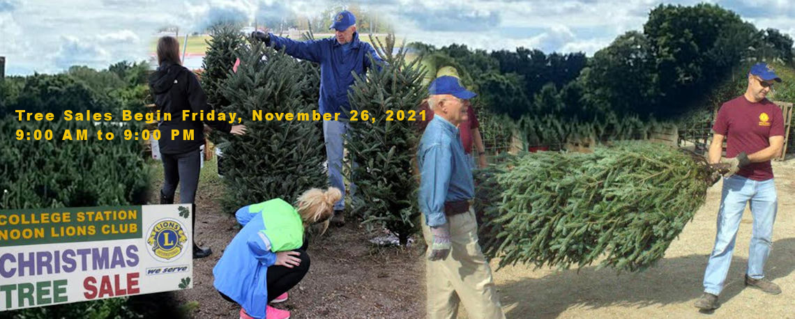 Christmas Trees 2021